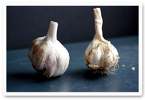 Garlic – Peel It, Slice It, Mince It, Love It