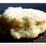 cheesedillbiscuits0_032110