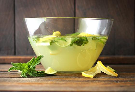Karen's Zesty Lemon Lime Mojitos for Four