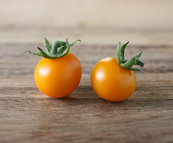 first-tomatoes-2014