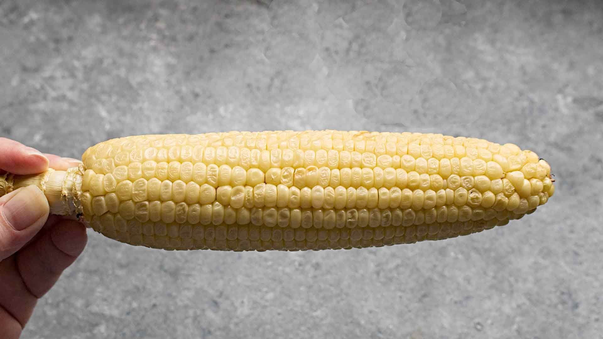 Ear of wood-smoked corn for Smoky hatch chile corn chowder