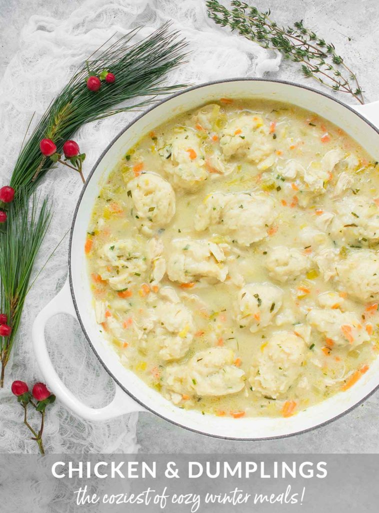 A large white soup pot filled with Chicken and Dumplings