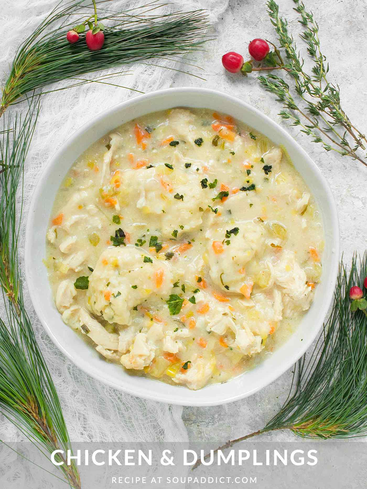 A bowl of Chicken and Dumplings