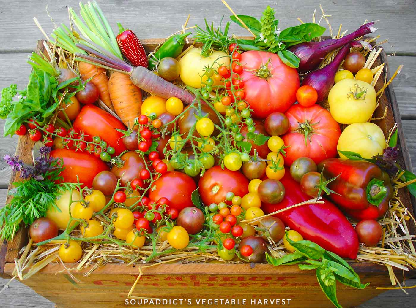 Old-fashioned wooden crate filled with vegetables harvested from thegarden